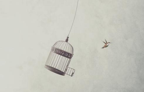 miedo libertad emoción